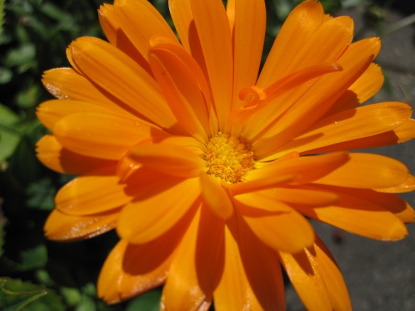 An orange glow