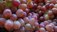 fruit grapes