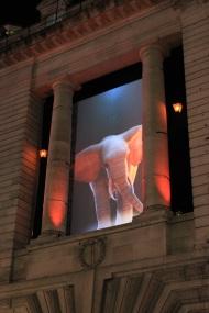 Elephantastic - front
