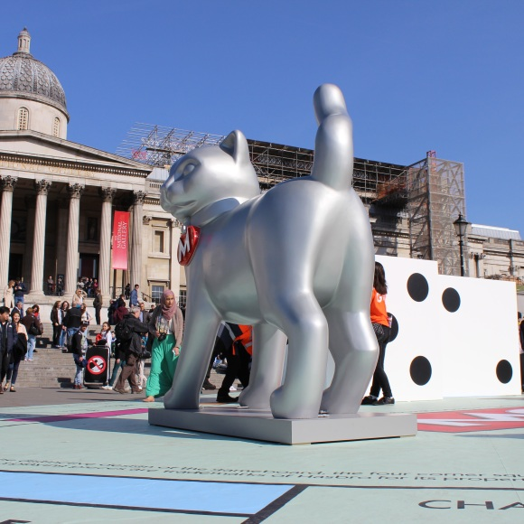 Cat and National Gallery