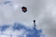 Angel fish kites