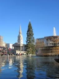 Trafalgar Square fountains and tree