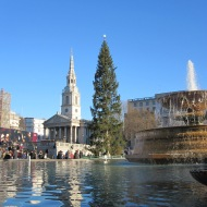 Trafalgar Square fountains and tree