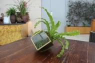 Tipsy plantpot