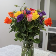 Colourful flowers in vase