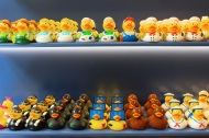 Novelty ducks