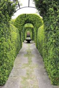 Hedged walkway