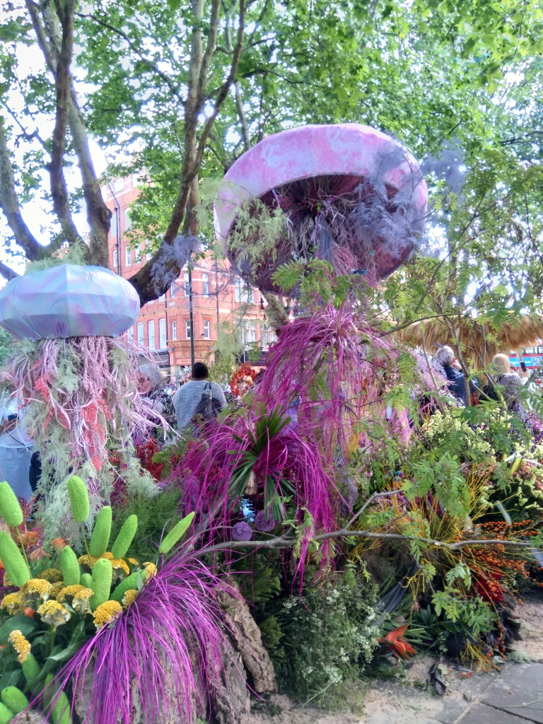 Jelly Fish, Sloane Square