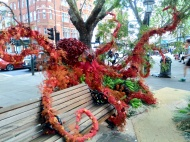 Octopus, Sloane Square