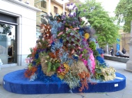 Flower display