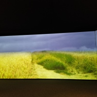 Vincent van Gogh exhibition