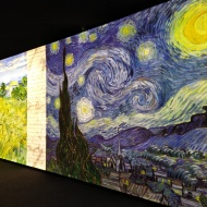 Meet Vincent exhibition