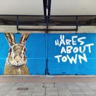 Hare street sart