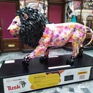 Rose Lion, 2021